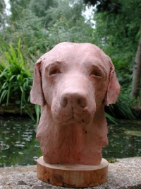 Sculpture portrait of a labrador -  - click on image for larger views of this animal sculpture